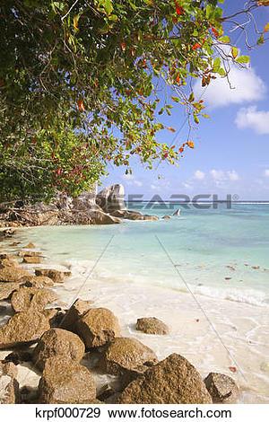 Stock Photograph of Seychelles, La Digue Island, Anse Source D.