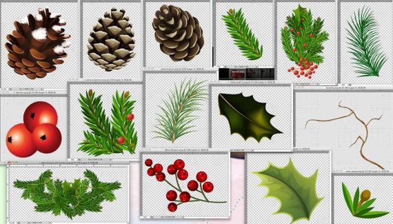 Pino e Berry Clipart Clipart di Natale di BellasScrapsnClips.