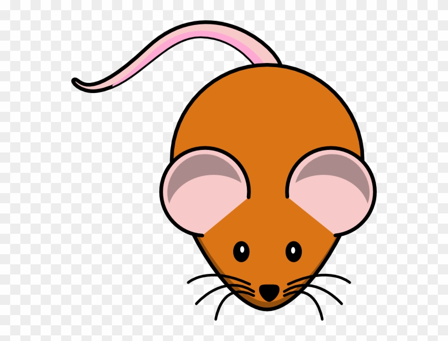 Mouse Clipart Research.