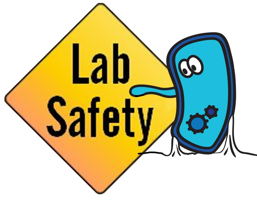 Download lab safety rules clipart Laboratory safety.