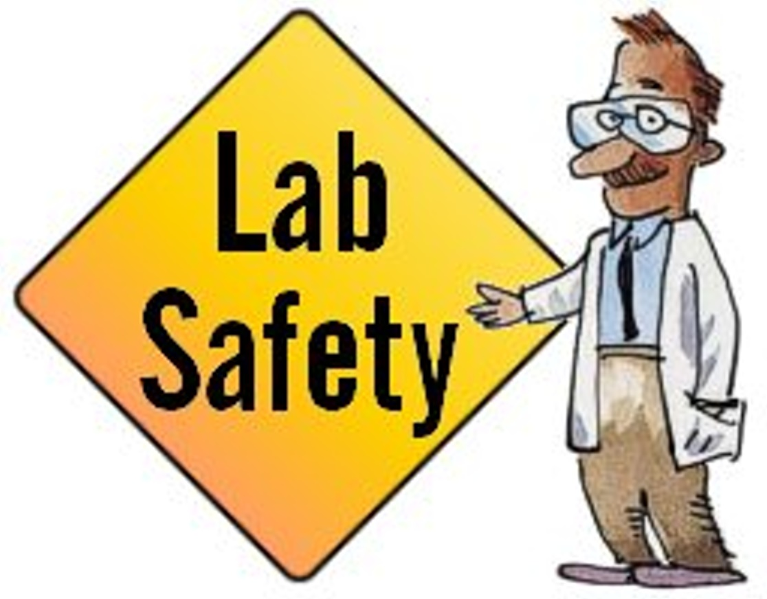 Lab Safety Rules Clipart.