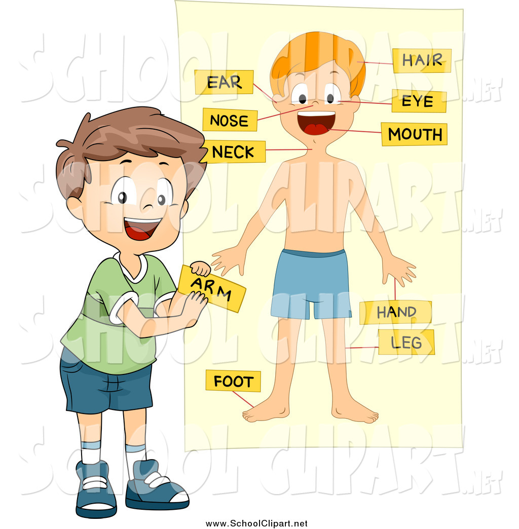 Clip Art of a School Boy Labeling Body Parts on a Chart by BNP.