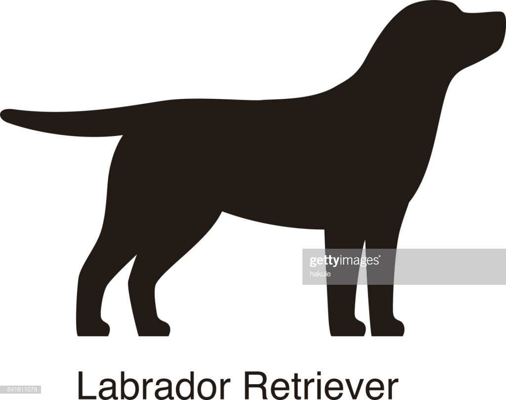 60 Top Labrador Retriever Stock Illustrations, Clip art, Cartoons.
