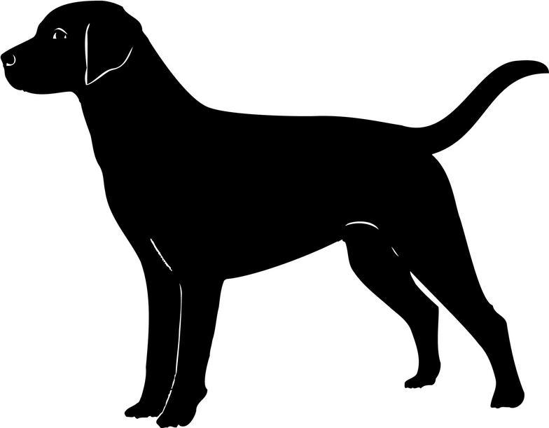 Labrador clipart.