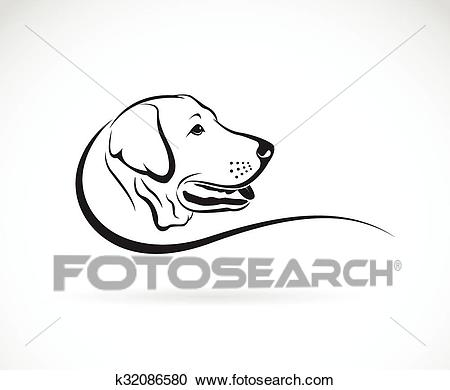 Vector image of an dog labrador head on white background Clipart.