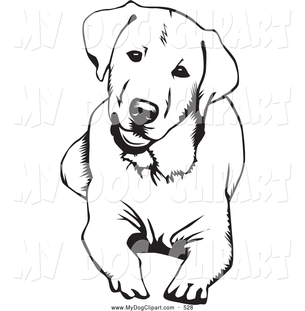 Free labrador retriever clipart.