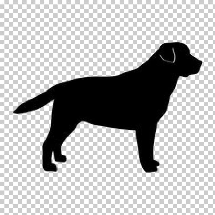 Labrador Retriever Golden Retriever Dog breed Silhouette.
