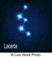 Lacerta Clipart and Stock Illustrations. 33 Lacerta vector EPS.
