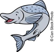 Vector Clip Art of Salmon fish.