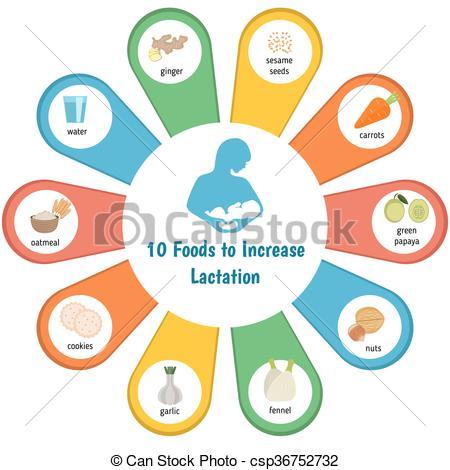 Vector Illustration of breast lactation breastfeeding symbols.