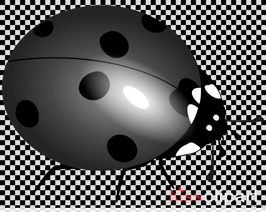 lady bug clipart Lucky Ladybug Ladybird beetle Clip art.