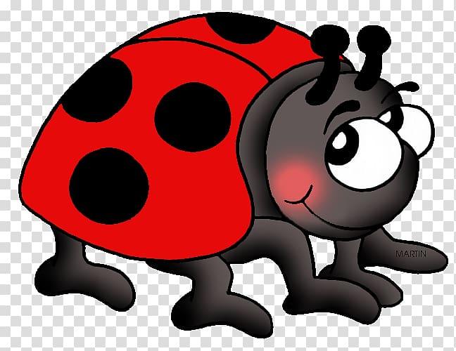 Ladybird The Grouchy Ladybug Beetle , beetle transparent background.