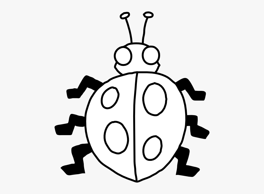 Lady Bugs Clip Art Black And White #116155.