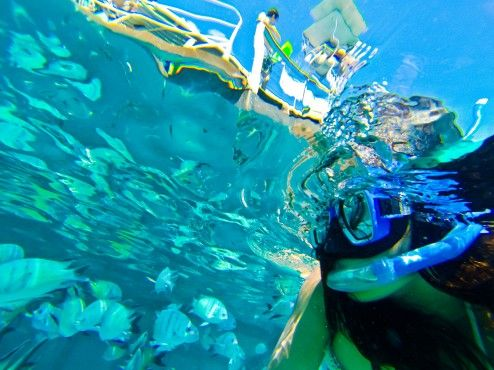 Me snorkelling @ Lady Musgrave island #Greatbarrierreef.
