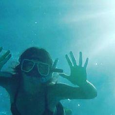 Great Barrier Reef Lady Elliot Island Australia.