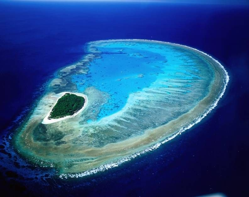 Lady Musgrave Island, Queensland, Australia.