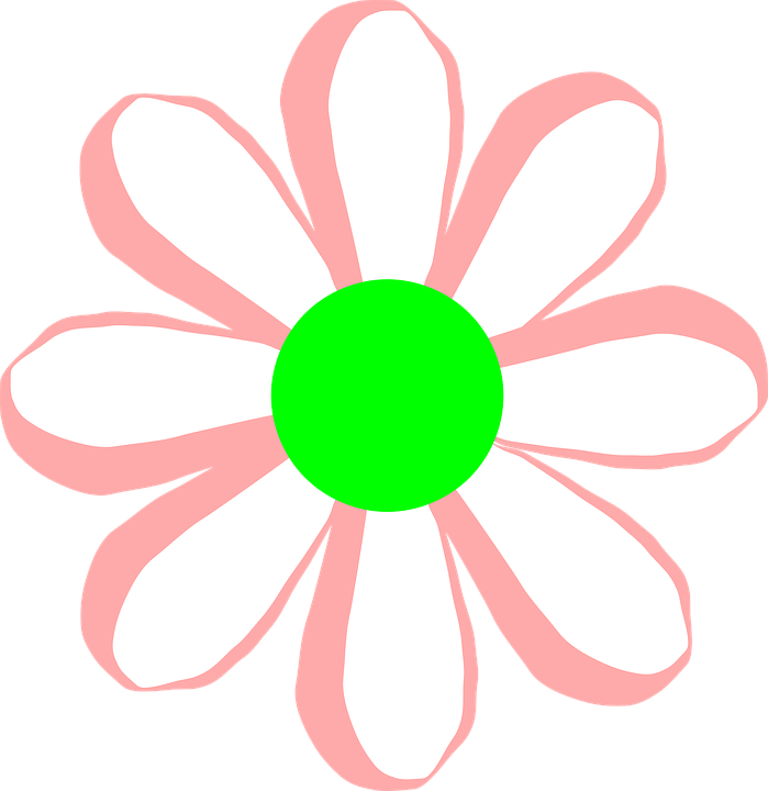 Free vector graphic: Flower, Bloom, Pink, White, Green.