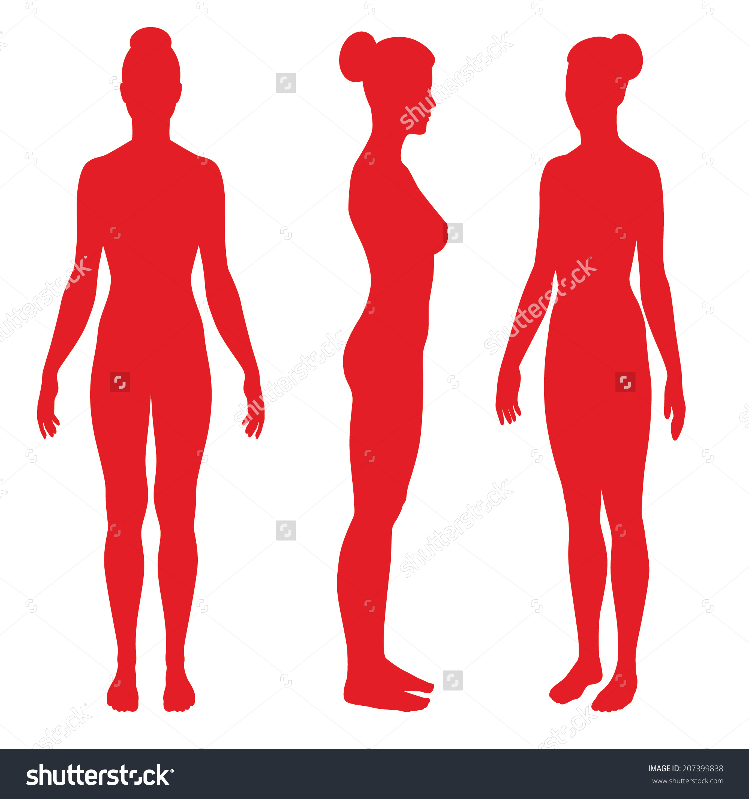 Set Silhouettes Standing Naked Woman Front Stock Vector 207399838.