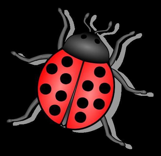 Ladybug clipart tumblr.