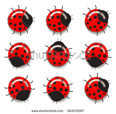 Ladybug Stock Images, Royalty.