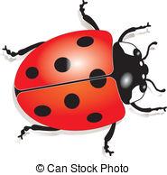Ladybird beetle Clip Art and Stock Illustrations. 3,011 Ladybird.