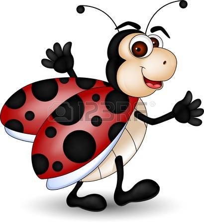 5,578 Ladybird Beetle Stock Vector Illustration And Royalty Free.