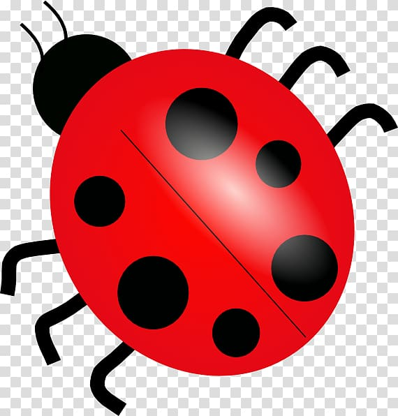 Ladybug Clipart transparent background PNG cliparts free.