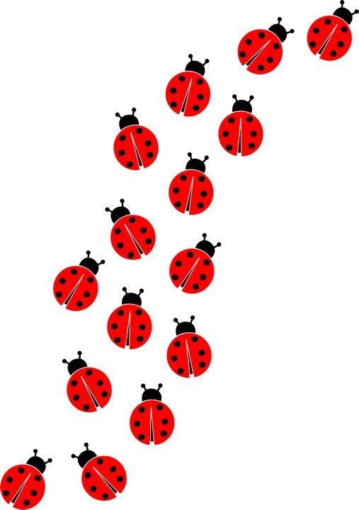 Free Ladybug Cliparts Borders, Download Free Clip Art, Free Clip Art.