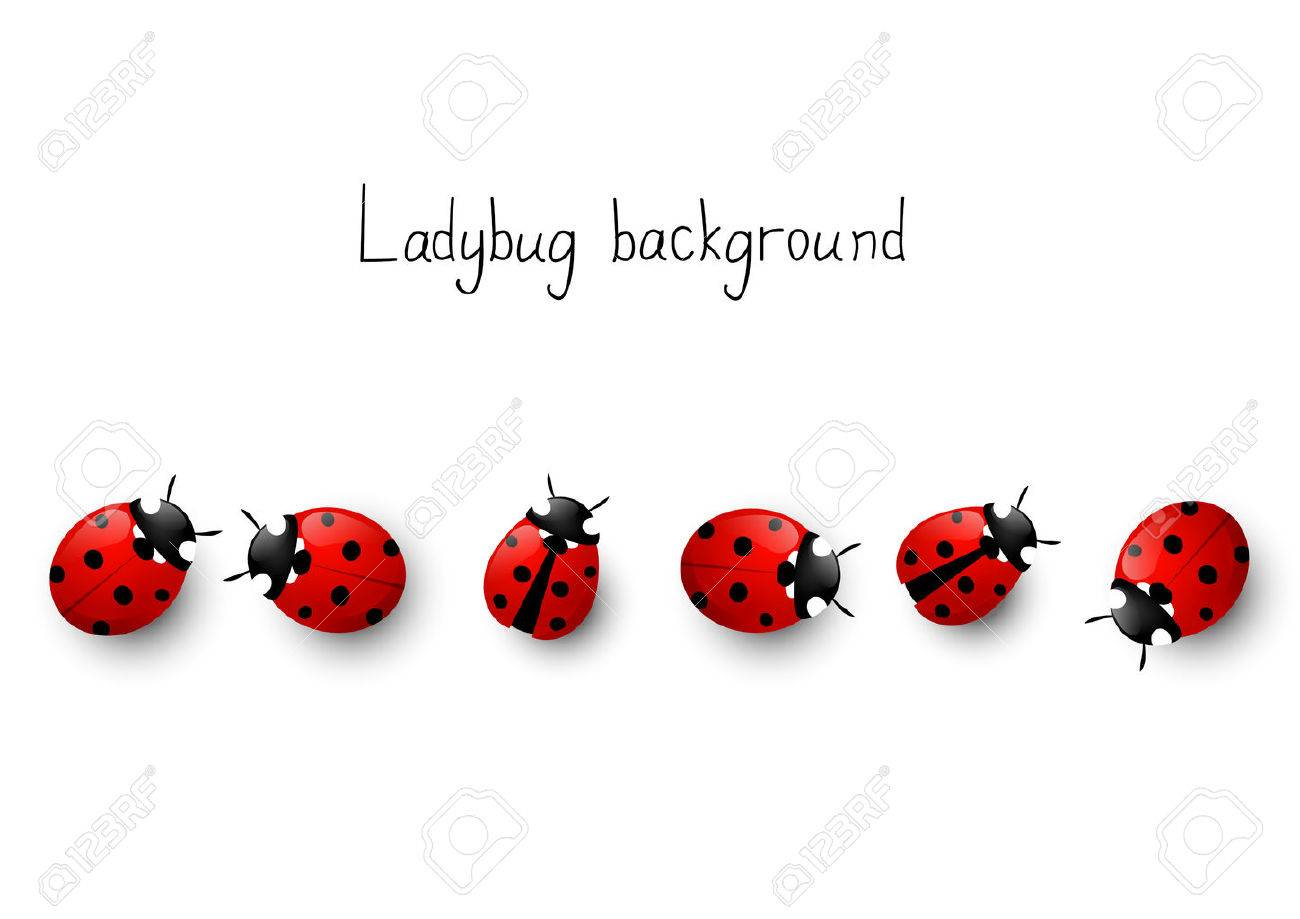 Ladybug border for Your design.