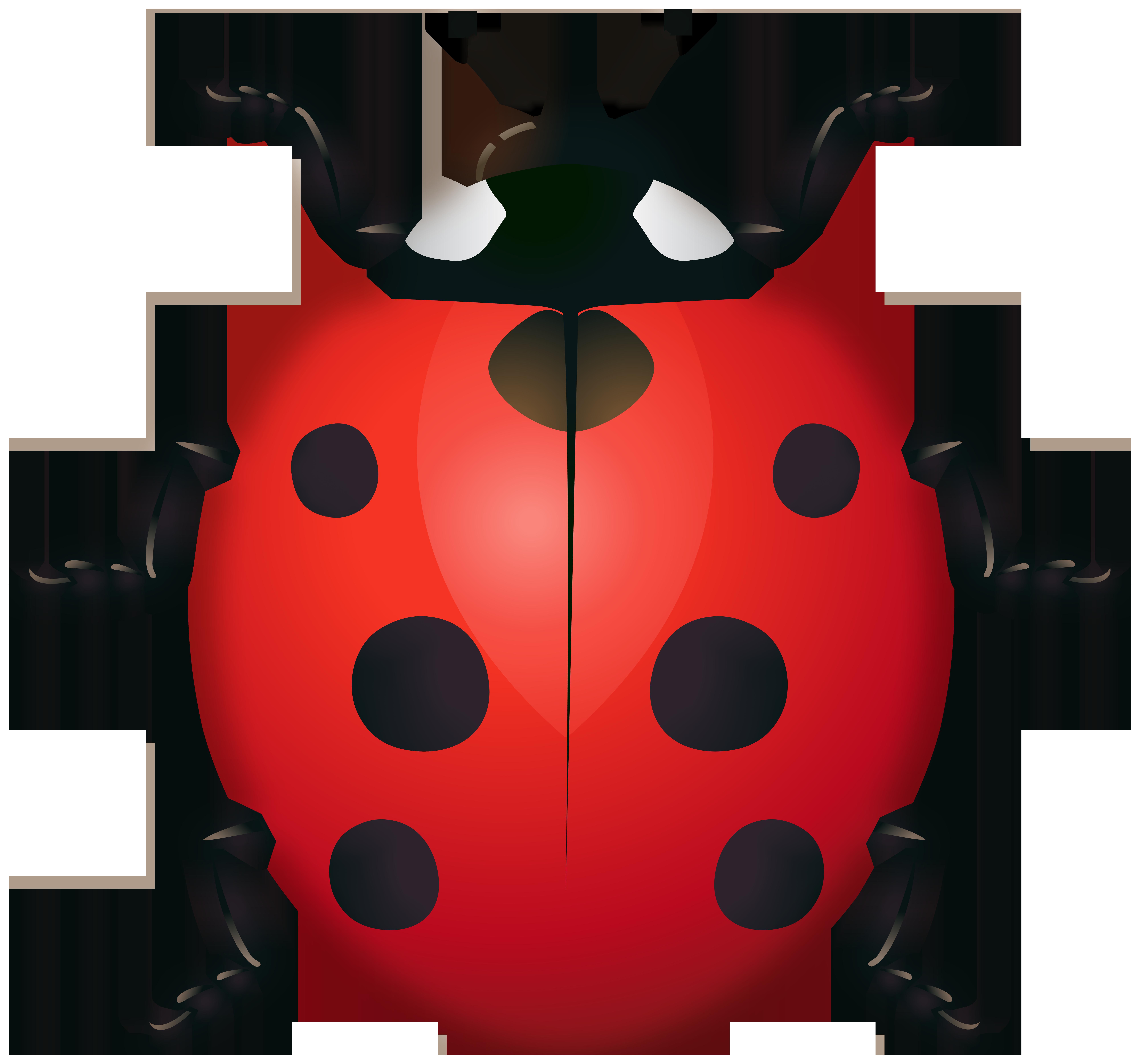 Ladybug Clipart Image.
