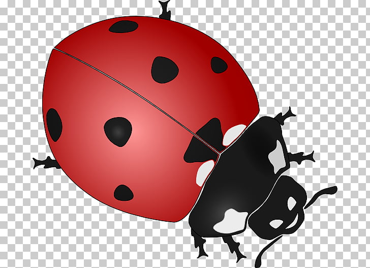 Beetle Ladybird Drawing Black and white , Cartoon Ladybug s.