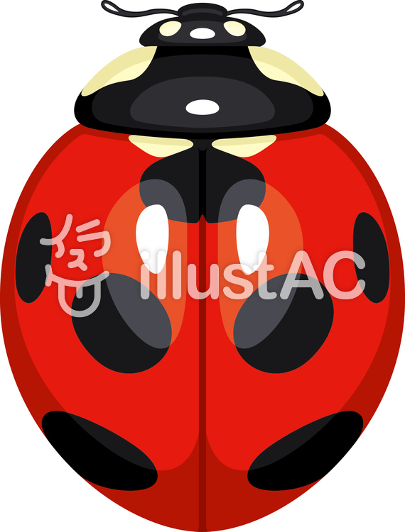 Ladybug Nana Hoshi Tento.