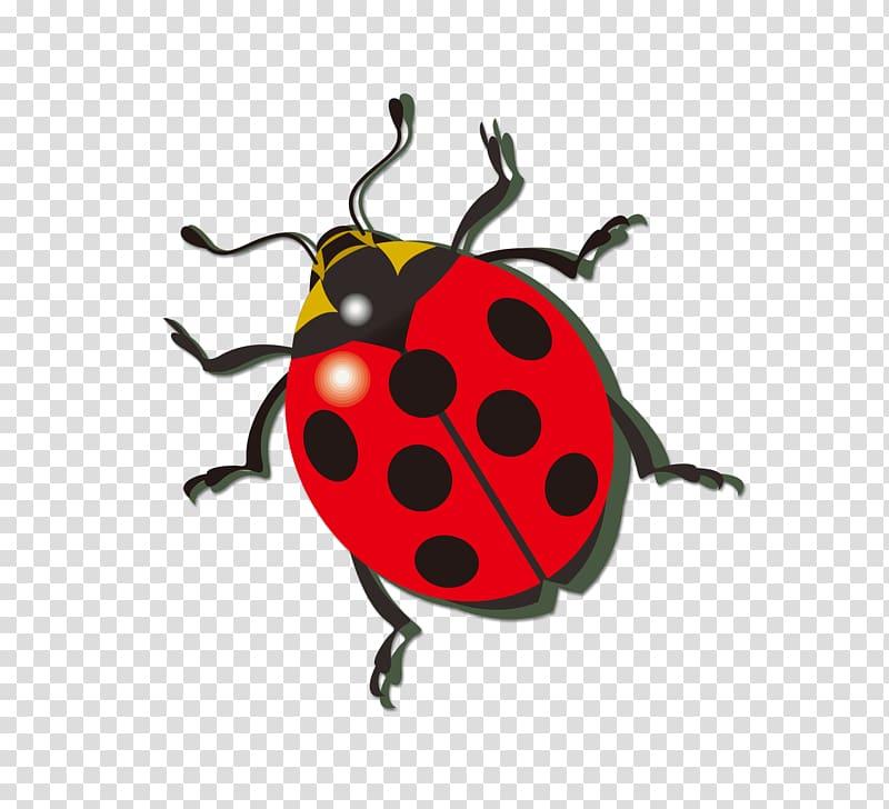 Ladybird Icon, ladybug transparent background PNG clipart.