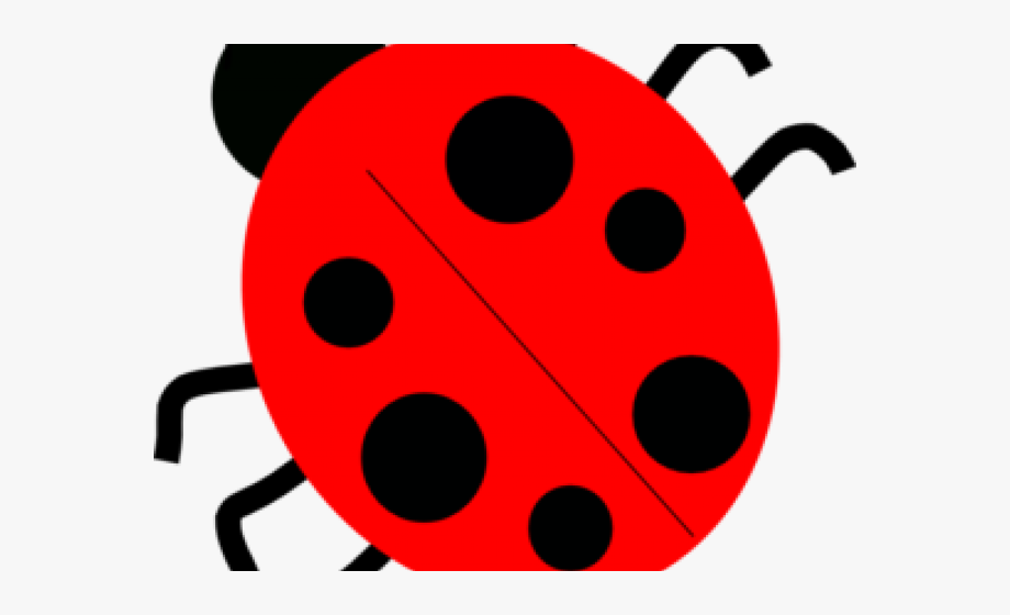 Lady Beetle Clipart Red.
