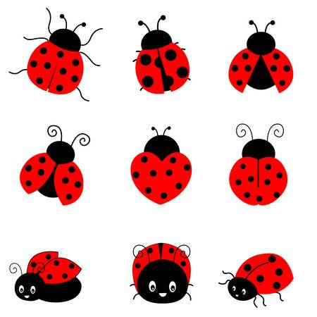 Free ladybug clipart » Clipart Station.