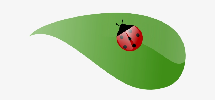Ladybug Clipart Leaf Clip Art.