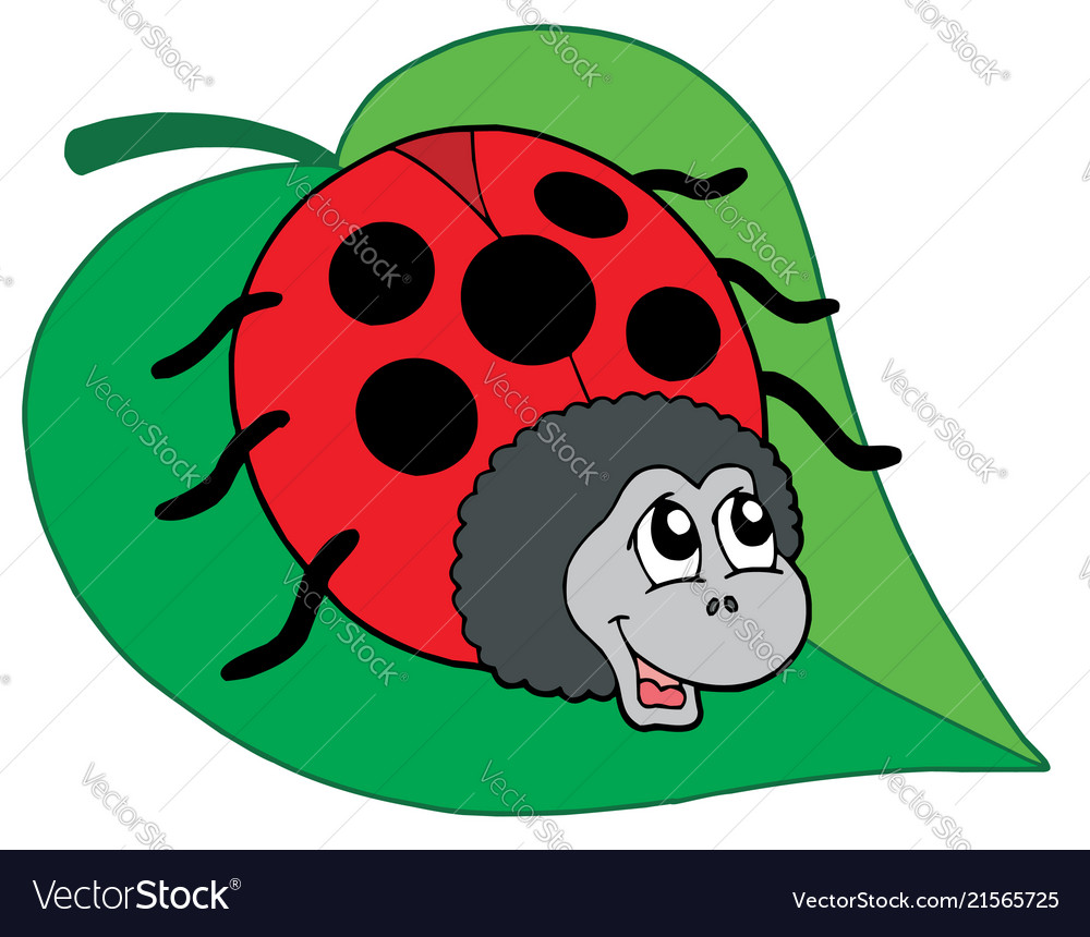Cute ladybug on leaf.