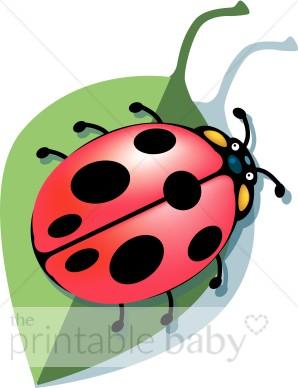 Ladybug on Leaf Clipart.