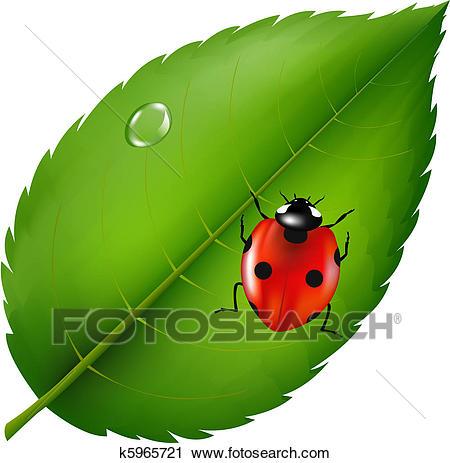 Ladybird On Leaf Clipart.