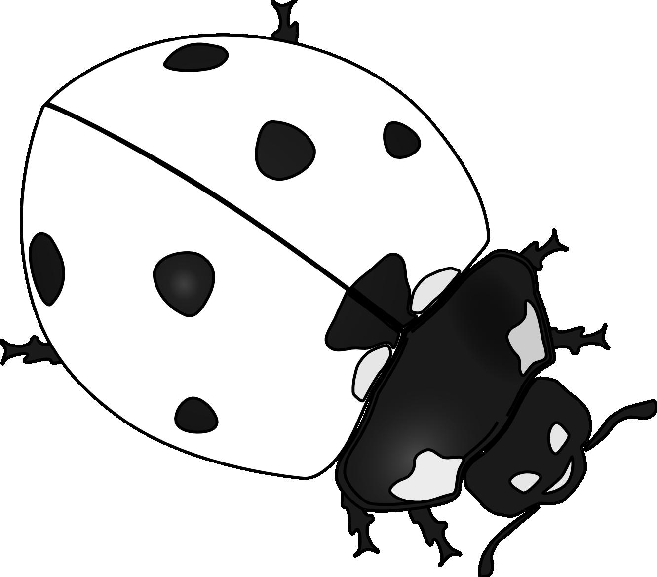 Similiar Black And White Ladybug Clip Art Keywords.