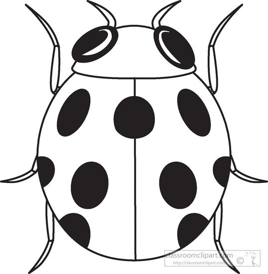 Flying Ladybug Clipart Black And White.