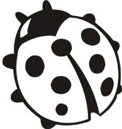 Similiar Black And White Ladybug Keywords.