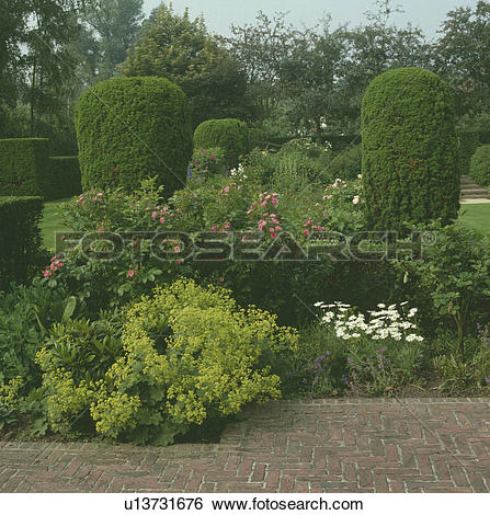 Stock Images of Corner of a large country garden with lady's.