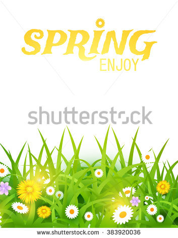Spring Coming Meadow Full Yellow Daffodils Stock Foto 47598262.