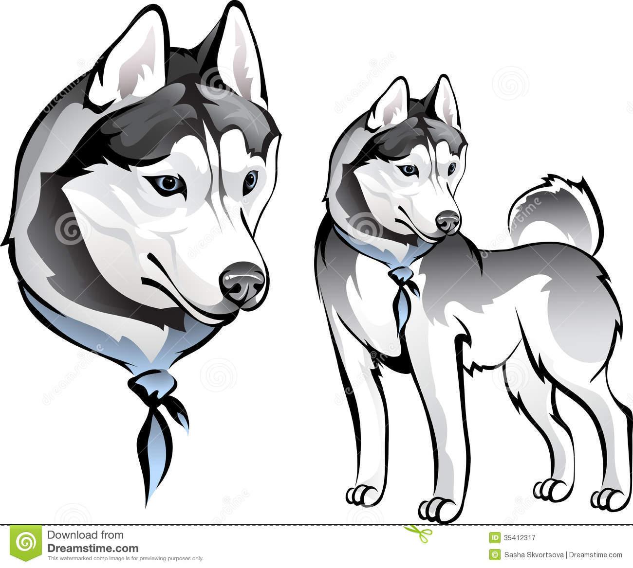 Laika Stock Illustrations.