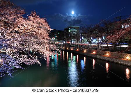 Stock Photography of Lake biwa canal with sakura at night.
