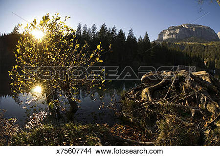 Stock Photo of Late afternoon light on Lake Cresta (Lag la Cresta.