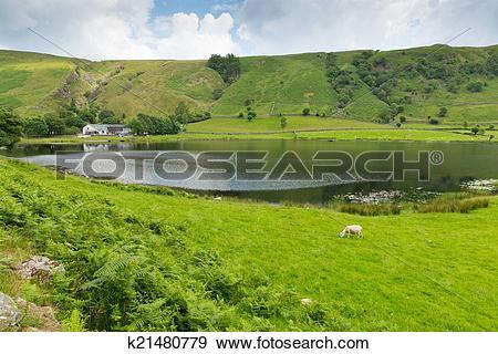 Stock Photograph of Watendlath Tarn Lake District Cumbr k21480779.