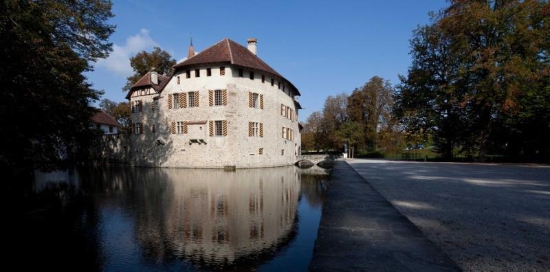 Hallwyl castle at lake Hallwil.