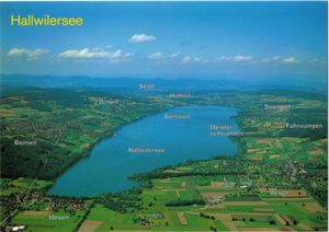 Postcard: Lake Hallwil, aerial view (Switzerland) (Lake Hallwil.